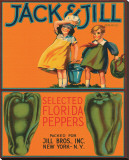 Jack & Jill Brand Selected Florida Peppers Stretched Canvas Print