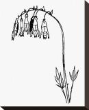 Manypeeplia Upsidownia Leinwand von Edward Lear