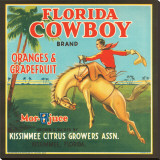 Florida Cowboy Brand Oranges & Grapefruits Stretched Canvas Print