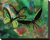 Green Butterfly Fantasy Stretched Canvas Print by Melinda Bradshaw