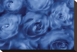 Roses Are Blue Stretched Canvas Print by Dan Magus