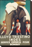 Lloyd Triestino, Indes Stretched Canvas Print