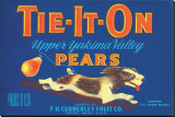 Tie-It-On Upper Yakima Valley Pears Reproducción en lienzo de la lámina