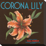 Corona Lily Brand Citrus, California Stretched Canvas Print