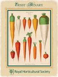 Ernst Benary Carrots Plaque en métal par Ernst Benary