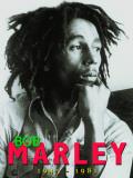 Bob Marley Blechschild