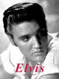 Elvis Plechová cedule