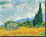 Wheatfield with Cypresses, c.1889 Stretched Canvas Print by Vincent van Gogh
