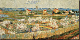 Peach Blossoms in the Crau, c.1889 Stretched Canvas Print by Vincent van Gogh