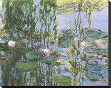 Water Lilies Stretched Canvas Print by Claude Monet