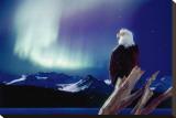 Eagle and Aurora Borealis Stretched Canvas Print