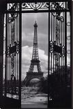 Paris View Stretched Canvas Print