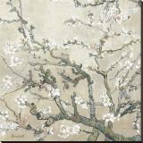 Branches d'amandier en fleurs, Saint-Rémy, vers1890 - tonalité brun beige Reproduction sur toile tendue par Vincent van Gogh