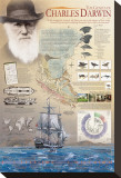 The Genius of Charles Darwin Stretched Canvas Print