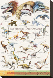 Feathered Dinosaurs II Stretched Canvas Print