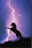 Lightning and Silhouette of a Horse Stretched Canvas Print
