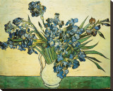 Vase of Irises, c.1890 Stretched Canvas Print by Vincent van Gogh