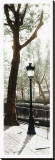 Lamppost Stretched Canvas Print by Joane Mcdermott