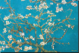 Branches d'amandier en fleurs, Saint-Rémy, 1890 Reproduction sur toile tendue par Vincent van Gogh