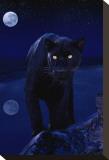 Black Panther in Moonlight Lærredstryk på blindramme