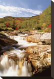 Ausable River, New York Stretched Canvas Print