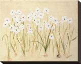Flower III Impressão em tela esticada por Brigitte Beliose