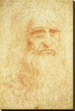 Self-Portrait Stretched Canvas Print by  Leonardo da Vinci