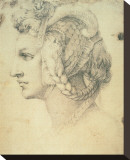 Drawing of A Woman Stretched Canvas Print by Michelangelo Buonarroti