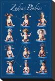 Bebés del Zodiaco Reproducción en lienzo de la lámina por Tom Arma