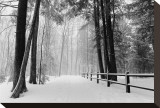 Winter Country Lane, Michigan Stretched Canvas Print