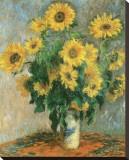 Les tournesols, vers 1881 Reproduction transférée sur toile par Claude Monet