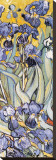 Irises, Saint-Remy, c.1889 (detail) Stretched Canvas Print by Vincent van Gogh