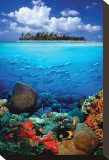 Tropical Scenery I Stretched Canvas Print