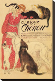 Clinique Cheron Stretched Canvas Print by Th&#233;ophile Alexandre Steinlen