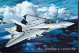 Airplane Grumman Tomcat F-14 Stretched Canvas Print