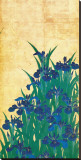 Irises, Japanese Stretched Canvas Print by Ogata Korin