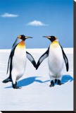 Penguin Love Stretched Canvas Print