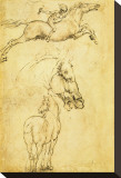Sketch of a Horse Stretched Canvas Print by Leonardo da Vinci