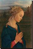 Vergine in Adorazione, c.1406-1469 Stretched Canvas Print by Fra Filippo Lippi