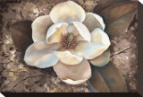 Magnolia II Stretched Canvas Print by Louise Montillio