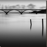Bridge and Poles in Black and White Stretched Canvas Print by Shane Settle