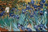 Irises, Saint-Remy, c.1889 Stretched Canvas Print by Vincent van Gogh