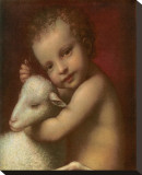 San Giovannino Stretched Canvas Print by Bernardino Luini