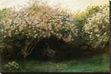 Le Repos sous les Lilas Stretched Canvas Print by Claude Monet