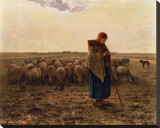 La Bergere, c.1814-1875 Stretched Canvas Print by Jean-Fran&#231;ois Millet