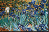 Lirios, Saint-Remy, ca. 1889 Reproducción en lienzo de la lámina por Vincent van Gogh