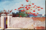 Wall, Nassau, c.1898 Stretched Canvas Print by Winslow Homer