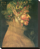 Summer Stretched Canvas Print by Giuseppe Arcimboldo