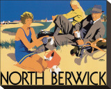North Berwick Stretched Canvas Print by Frank Newbould