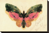 Butterfly Stretched Canvas Print by Albert Bierstadt
